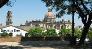 Jerez Cathedral and Wine Houses
